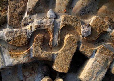 Wasserrinne in einer großen Matschanlage Kita Nossen